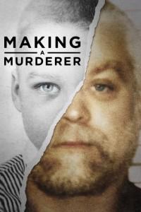 making a murderer Netflix tv series